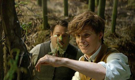 Fan Harry Potter phat sot vi clip hau truong 'Fantastic Beasts' nhieu bi an - Anh 2