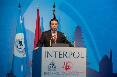 Thu truong cong an Trung Quoc duoc bau lam Chu tich Interpol - Anh 1
