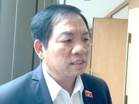 Dung dien hat nhan Ninh Thuan la quyet dinh dung cam - Anh 1