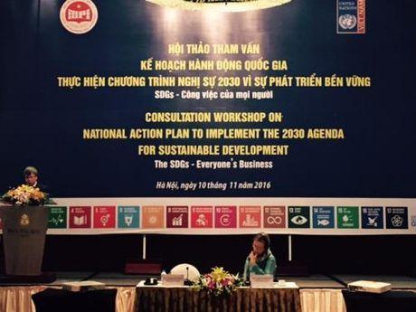 Viet Nam da cu the hoa viec thuc hien Chuong trinh nghi su 2030 - Anh 1