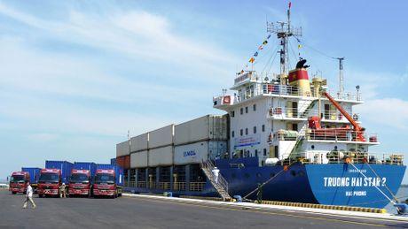Mien Trung bo ngo logistics - Anh 1