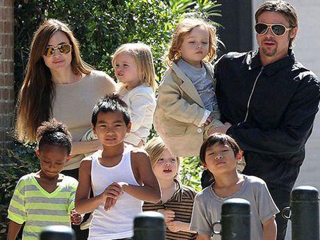 Brad Pitt ru sach cao buoc bao hanh con - Anh 2