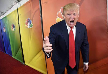 Tieu su tan Tong thong My: Donald Trump tung lam MC truyen hinh - Anh 2