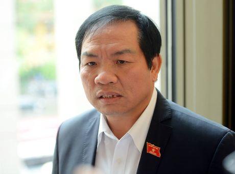 'Dung du an dien hat nhan Ninh Thuan la dung cam' - Anh 1