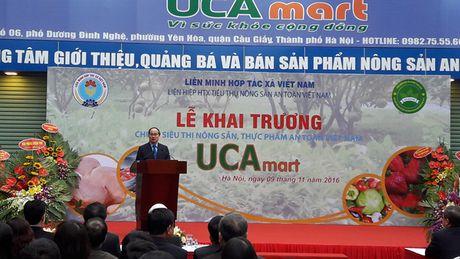 Khai truong chuoi sieu thi thuc pham nong san an toan Viet Nam - UCAmart - Anh 1