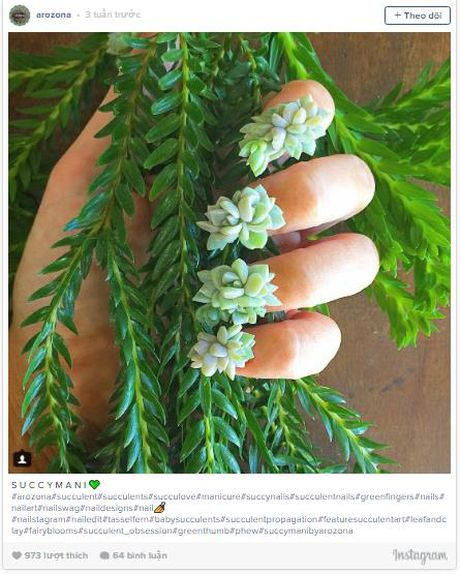 Trao luu 'nail mong nuoc' can quyet Instagram - Anh 4