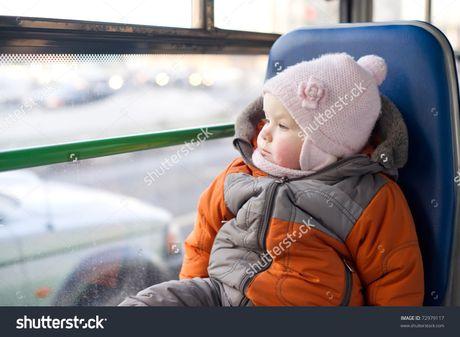 Meo giu be ngoan khong khoc tren xe khach, may bay - Anh 8