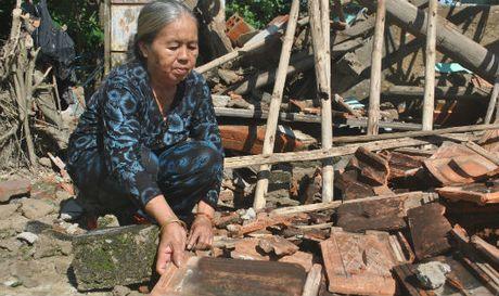 Cam dong tinh nguoi trong ron lu Phuoc Thuan - Anh 1