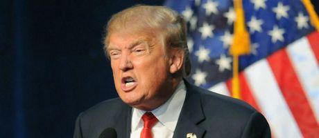 La thu 150 chu 'gui Donald Trump' gay bao tren mang Internet - Anh 1