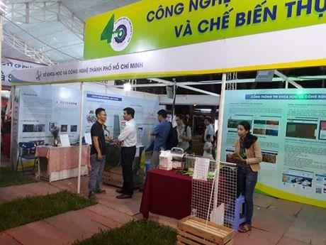 Nuoc mam truyen thong khang dinh vi the tai Hi-tech Agro - Anh 2