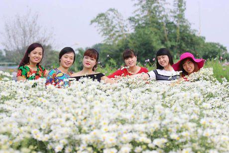 Ha Noi dep nao long mua hoa cuc hoa mi - Anh 5