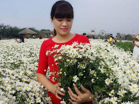 Ha Noi dep nao long mua hoa cuc hoa mi - Anh 7
