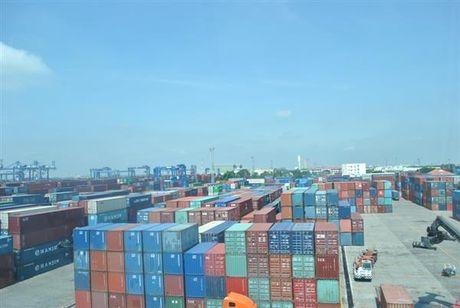 Ton dong gan 800 container hang tai cua khau cang Sai Gon - Anh 1