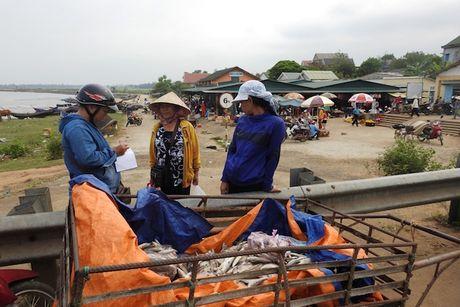 Quang Tri: Hon 114 ti dong boi thuong cho dan vung bien - Anh 1