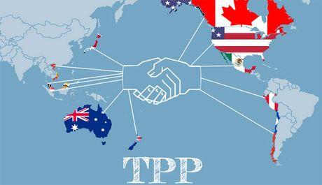 Donald Trump lam Tong thong: My se rut khoi TPP? - Anh 1
