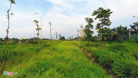 Xu ly co moc um tum tren QL18 doan Noi Bai – Bac Ninh - Anh 1