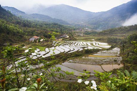 Ngo ngang ve dep hoang so va binh yen noi vung bien Quang Ninh - Anh 5