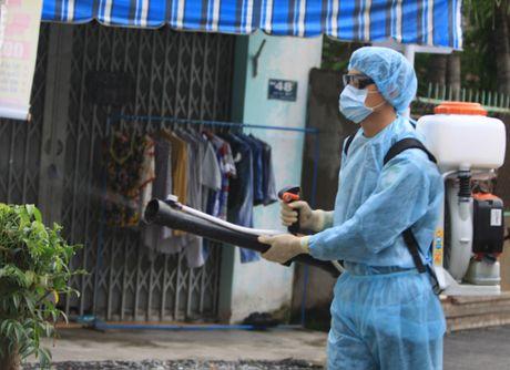 TP.HCM phat hien them 6 truong hop nhiem Zika - Anh 1