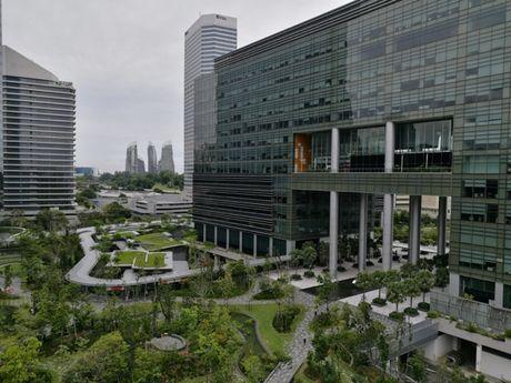 Di xem tru so moi dep nhu mo cua Google tai Singapore - Anh 31