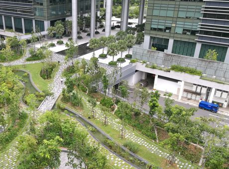 Di xem tru so moi dep nhu mo cua Google tai Singapore - Anh 4