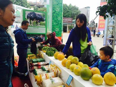 Khai mac trien lam Agro Viet 2016 - Anh 2