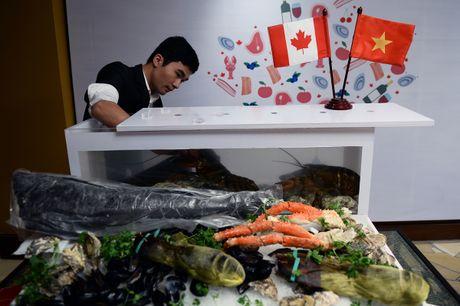 Khoi dong 'Thang am thuc Canada tai Viet Nam' - Anh 8