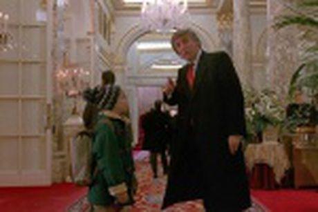 Nguong mo chang re kiem co van tai ba cua Tong thong Donald Trump - Anh 14