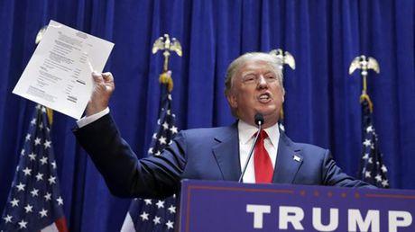 Donald Trump - Tong thong thu 45 cua nuoc My se 'dap bai, chia lai'? - Anh 3