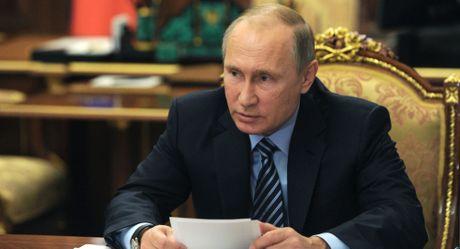 Thai do cua Putin doi voi bau cu My - Anh 1