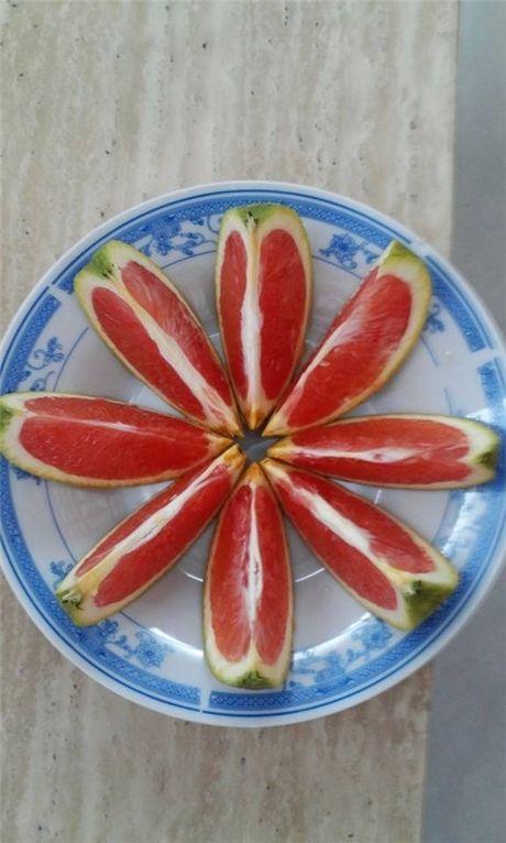 Ky la sau rieng ruot do, cam mau, thanh long vang hut khach - Anh 4