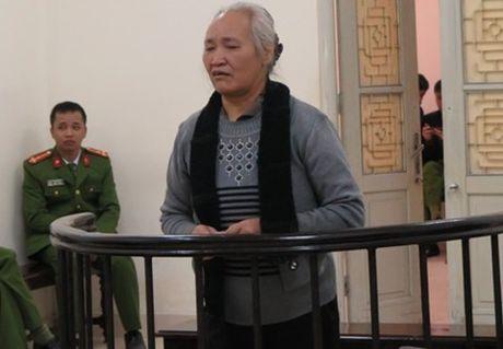 Giam an cho nguoi to chuc phan doi xay cho - Anh 1