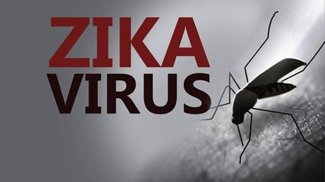 So nguoi nhiem Zika tai TP.HCM tang len 35 - Anh 1