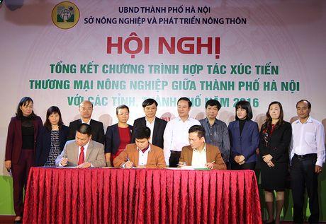 Xay dung Ha Noi lam diem mau ve quan ly ATTP nong san - Anh 2