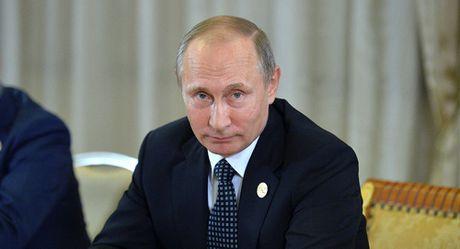 Tong thong Putin danh gia su on dinh cua kinh te Nga - Anh 1