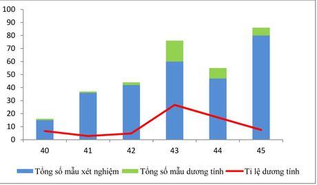 TP Ho Chi Minh: 1 quan co toi 7 truong hop mac virus Zika - Anh 3