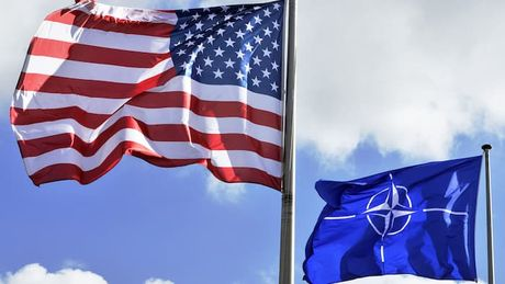 NATO: tan ra hay chi la 'rung cay doa khi' - Anh 1