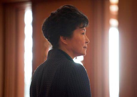Ba Park Geun-hye bac tin phau thuat tham my - Anh 1