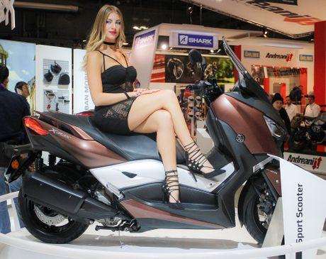 Xe tay ga Yamaha 300 phan khoi co the phan phoi tai Viet Nam - Anh 2