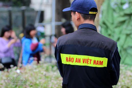 Selfie ben rung hoa tam giac mach giua Ha Noi - Anh 14