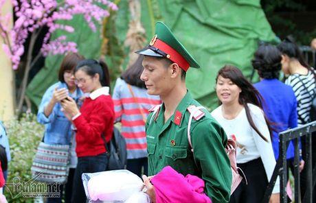 Selfie ben rung hoa tam giac mach giua Ha Noi - Anh 4