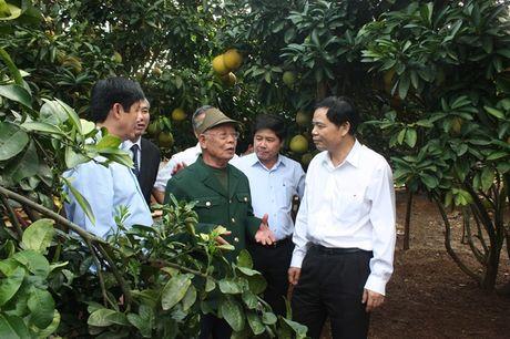 Bo truong Bo NN-PTNT Nguyen Xuan Cuong tham 'Vua buoi xu Muong' - Anh 1