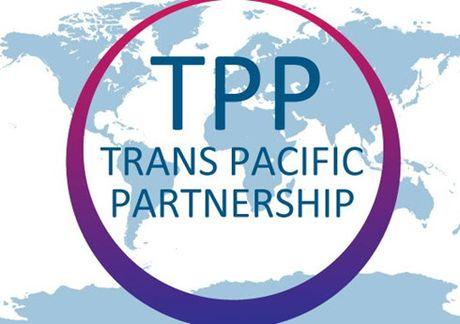 Chinh quyen Tong thong Obama tam ngung thuc day TPP - Anh 1