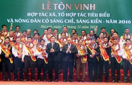 Thu tuong du le ton vinh cac HTX, nong dan co sang che tieu bieu - Anh 1