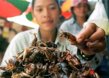 Noi da ga voi mon an kinh di nhat Campuchia - Anh 4