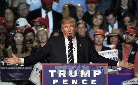 Tong thong My dac cu Donald Trump thong bao tuyen 4.000 quan chuc - Anh 1