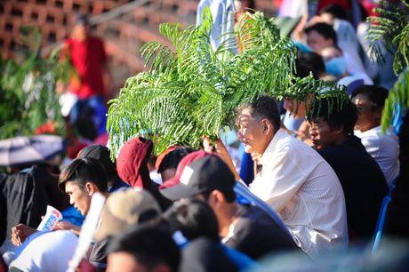 Chum anh: Toan canh tran Viet Nam - Avispa Fukuoka - Anh 9