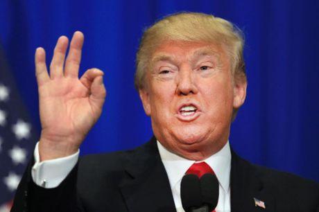 Trump doi giong dieu ve nguoi bieu tinh - Anh 1