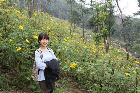 Gioi tre Ha Thanh dua nhau len Ba Vi ngam hoa Da Quy no ro - Anh 4