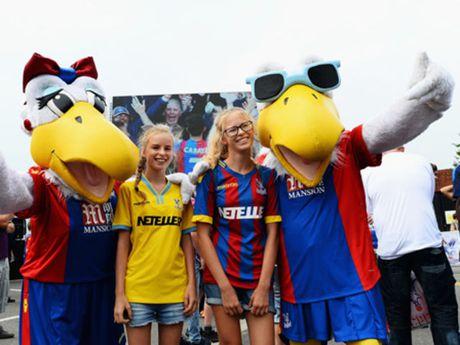Thu gian cuoi tuan: 20 linh vat ngo nghinh cua cac CLB tai Premier League - Anh 16