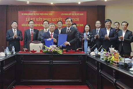 HTX va doanh nghiep la 2 nhan to quyet dinh thanh cong tai co cau nong nghiep - Anh 1